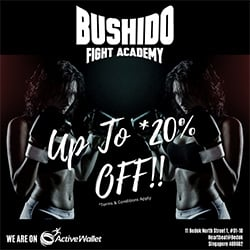 Bushido Fight Academy